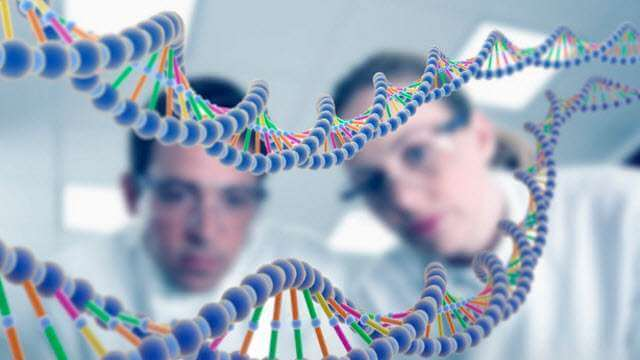 Is There a Link Between Human Genetics and Bipolar Disorder?